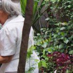 2018-02-02開催:タイ・チェンマイ@実践!伝統婦人医から学ぶ女性のためのハーブ温熱療法ユーファイと食事療法