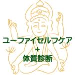 2020-02-17開催:愛知:ユーファイ式セルフケア【基礎】+タイ体質診断