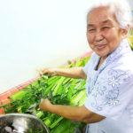 【報告】 2020-01-13開催:チェンマイ:第十六回ランナー(チェンマイ)式ユーファイ講習+ショッピングツアー④伝統婦人医研修